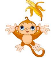 Sezione scimmiette